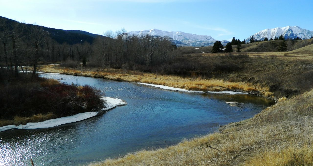 Crowsnest River - the Oldman Watershed