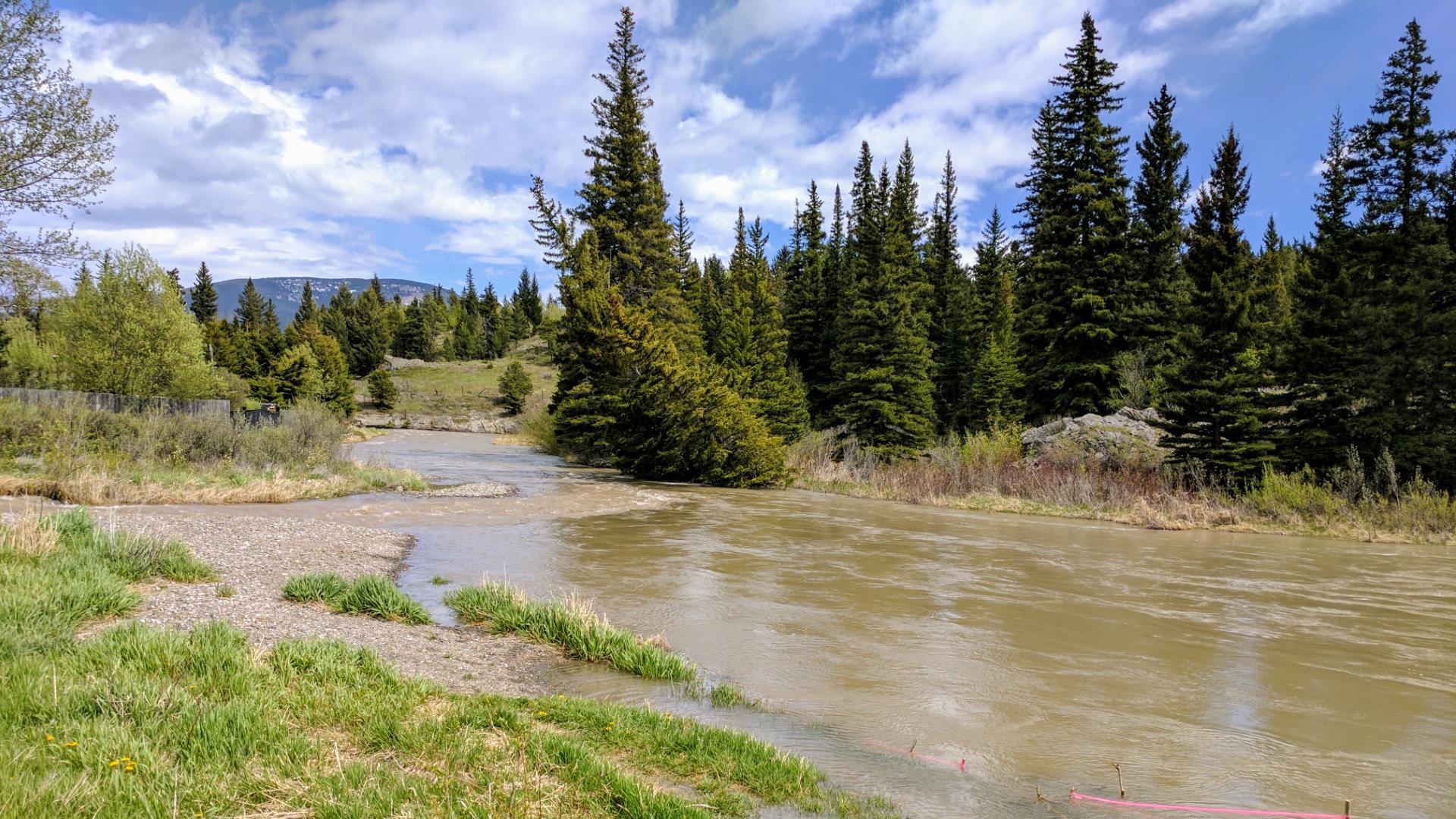 Muddy Water Alternatives