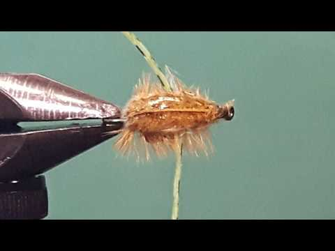 Boatman Backswimmer Video - My Fly Guy